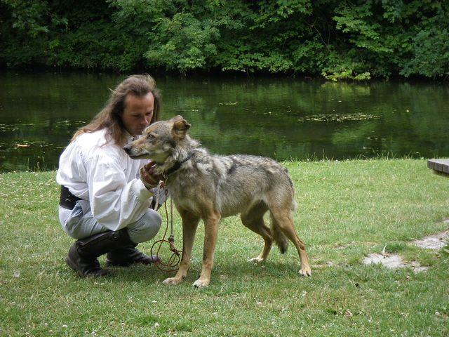 rencontre avec 3 loups Tn_img13