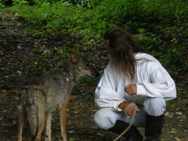 rencontre avec 3 loups Tn_img17