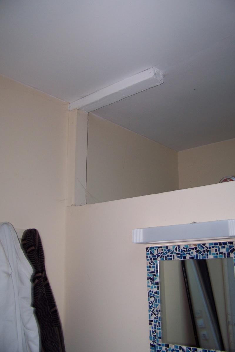 un nouveau chantier à préparer ma salle de bains! 100_4123
