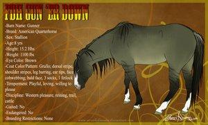 EquistrianPro's Bio's Fdh_gu10