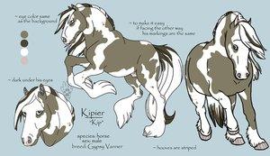 EquistrianPro's Bio's Kipier10