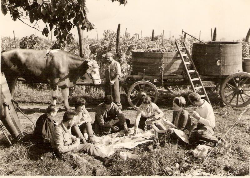La vie à la campagne autrefois Numar171