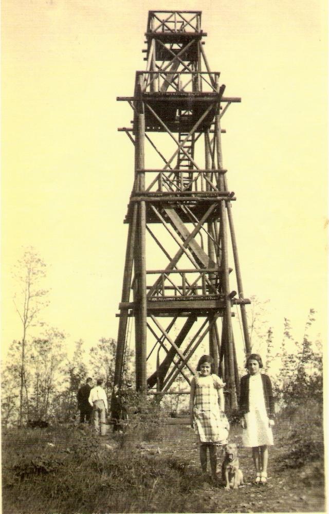 Le belvédère au sommet du Wangenberg Numari61