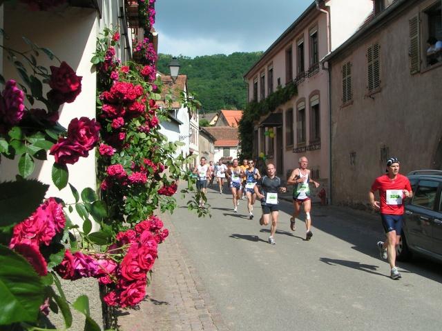 marathon - Edition 2009 du marathon du vignoble Pict1112