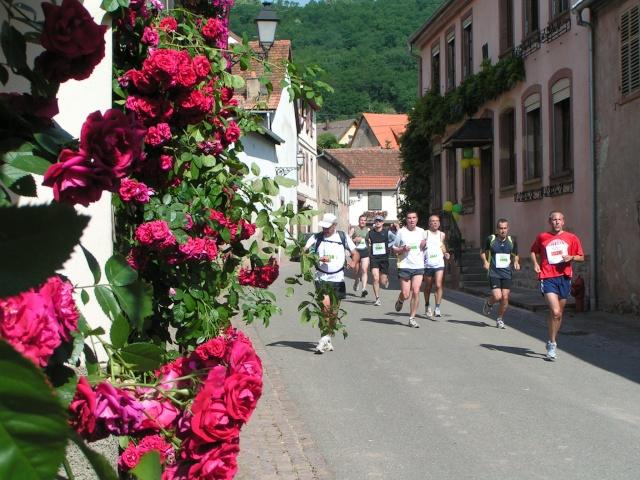 marathon - Edition 2009 du marathon du vignoble Pict1232