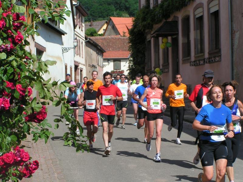 marathon - Edition 2009 du marathon du vignoble Pict1238