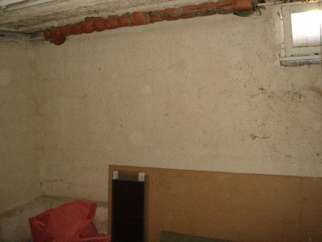 Ma nouvelle salle d'élevage en travaux Cave_p11