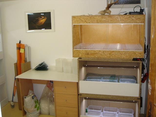 Ma nouvelle salle d'élevage en travaux Dsc00012