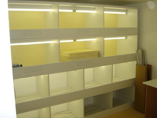 Ma nouvelle salle d'élevage en travaux Dsc09910