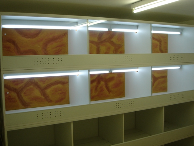 Ma nouvelle salle d'élevage en travaux Dsc09915