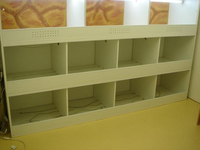 Ma nouvelle salle d'élevage en travaux Dsc09916