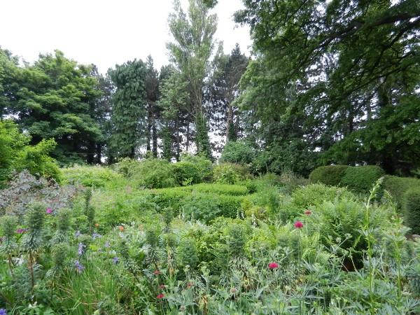 Primrose Hill Garden: 6 Euro, forse troppo? Lucan-10