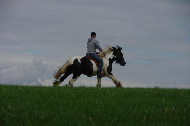 Le bonheur, c\'est simple comme un galop dans les champs ! Imgp6012