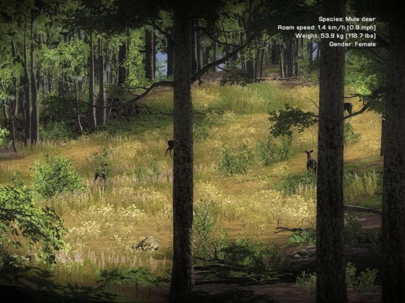Jeu de chasse : The Hunter - Page 2 4biche10