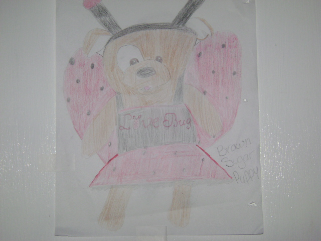 Draw A Build-A-Bear Brown_10