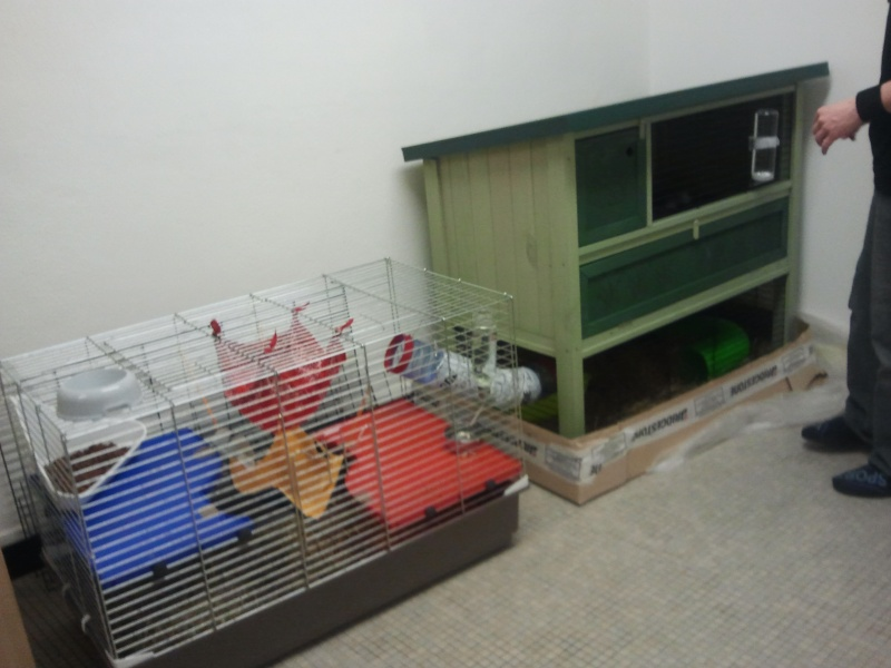 Les cages de mes bébés Cage_i10