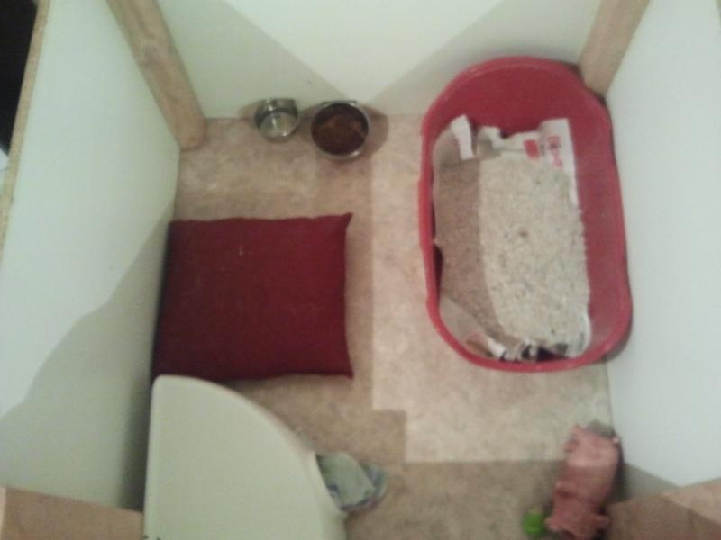 Les cages de mes bébés Cooki_10