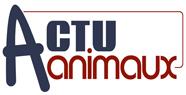 Actuanimaux (aidez les animaux en un simple clic) Actuan12