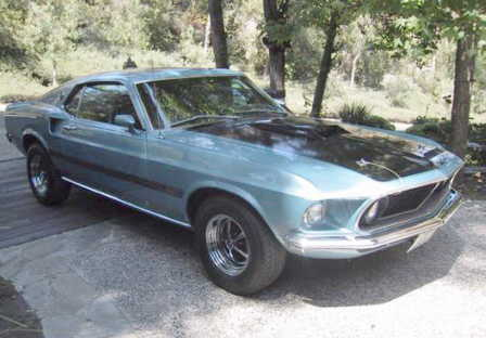 Ford Mustang´s 110