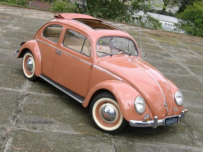 VW Fusca - Material Técnico & Afins Ft_2910