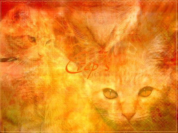 ♠Crep's Galery♠ Crep_s11