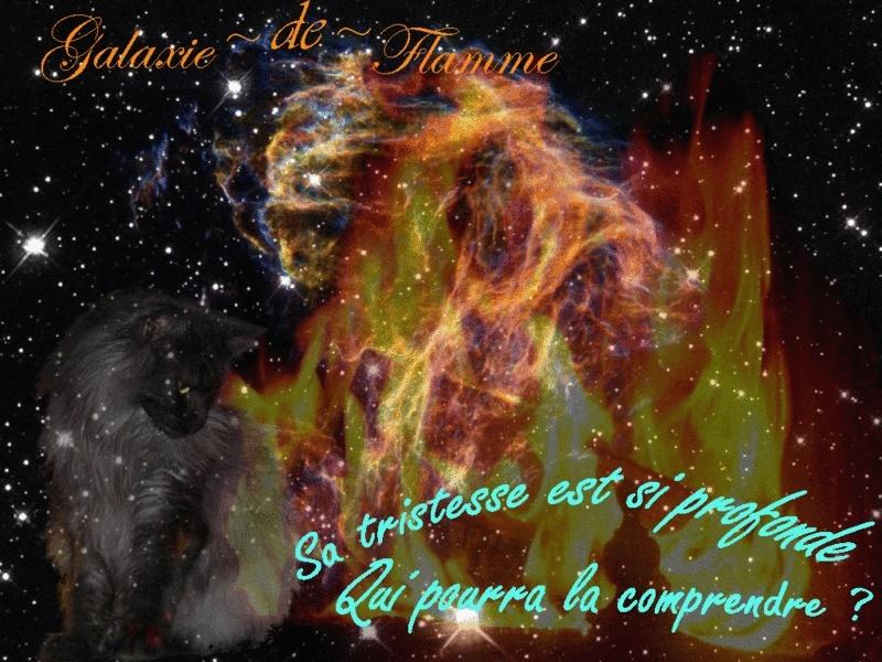 ¤ Chez lunatune ¤ Galaxi10