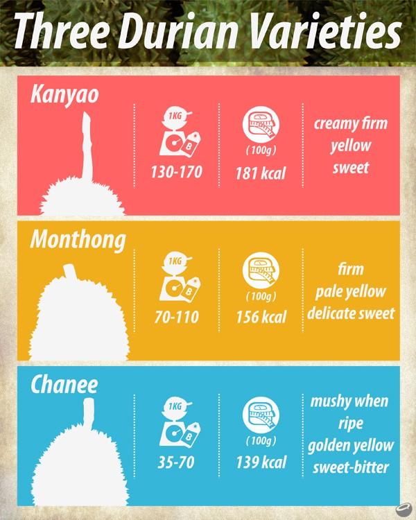 La cuisine en Asie du Sud-Est - Page 3 Durian10