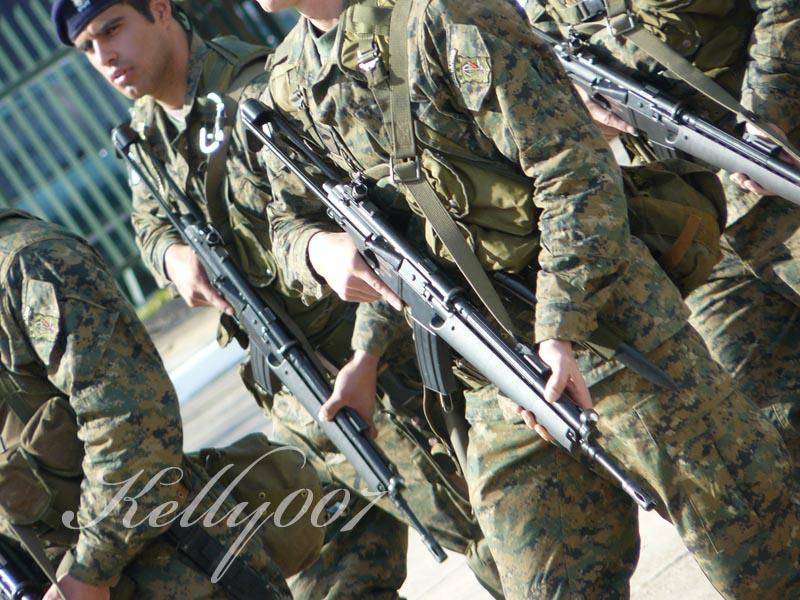 Dia de la Fuerza Aerea Argentina 310