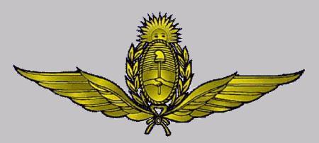 Dia de la Fuerza Aerea Argentina Fuerza10