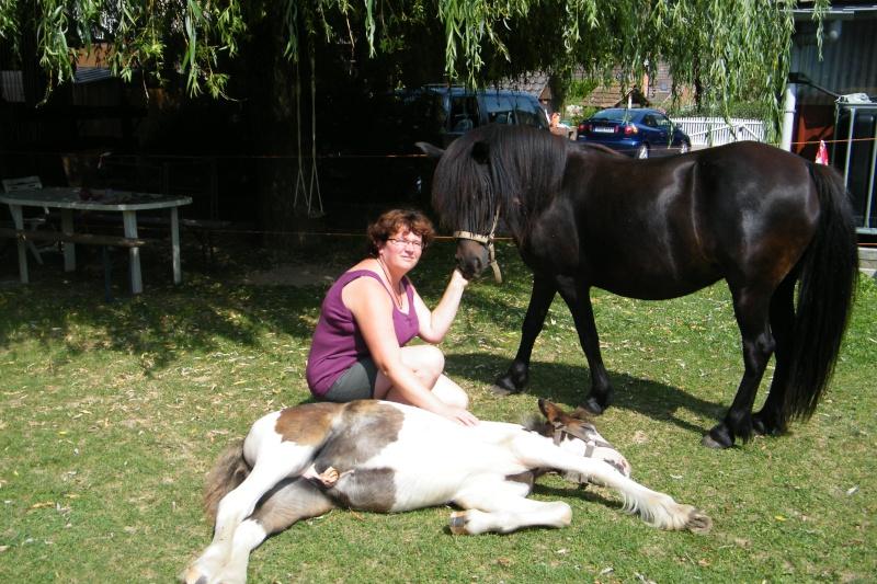 Une photo de vous et votre cheval - Page 4 2009_015