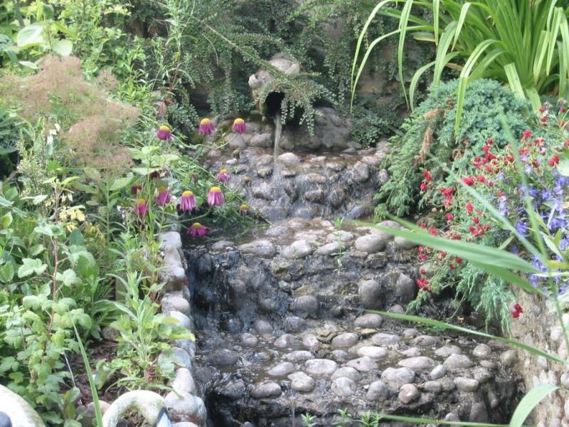photo bassin de steven Img_0017