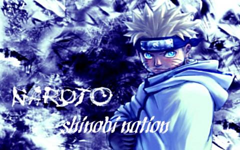 Shinobi Nation