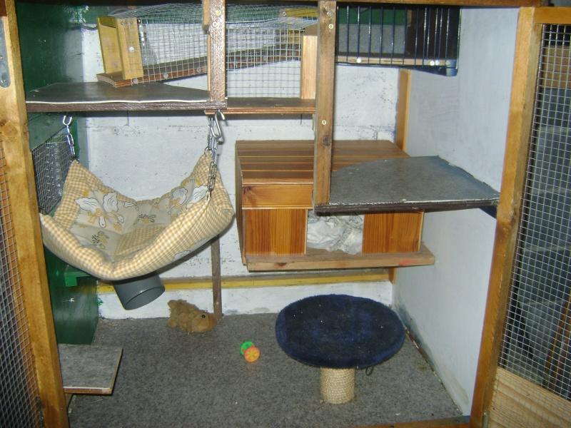 Leurs cages Dsc02318