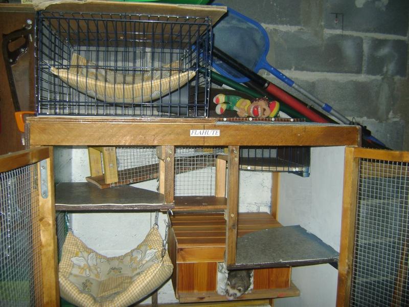 Leurs cages Dsc02320