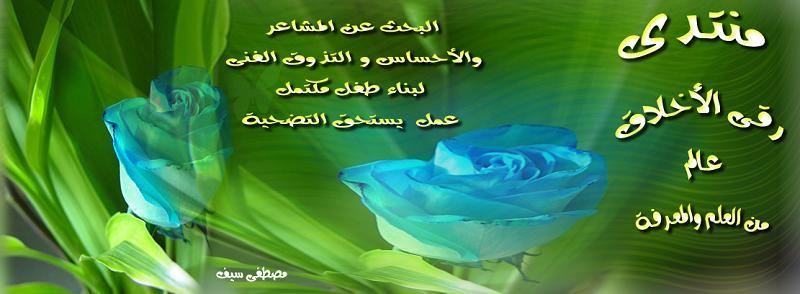 إســـــتـفـتـاء A1_411
