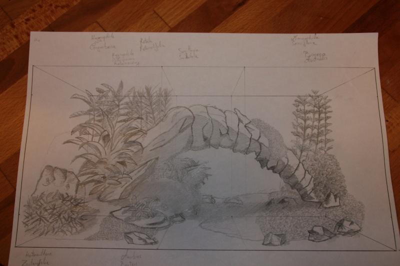 [54L] Création de mon premier bac | Etape 2: Choix des plantes et du décors Img_0812