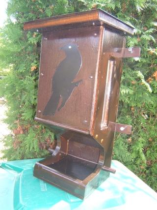 Quand nourir les oiseaux? Dscf7414