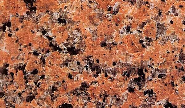 Des plantes, des bordures et... des pierres Grarc10