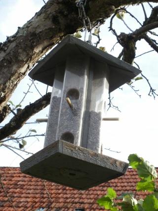 Quand nourir les oiseaux? P1010015
