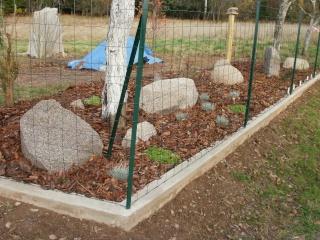 Des plantes, des bordures et... des pierres P1010020