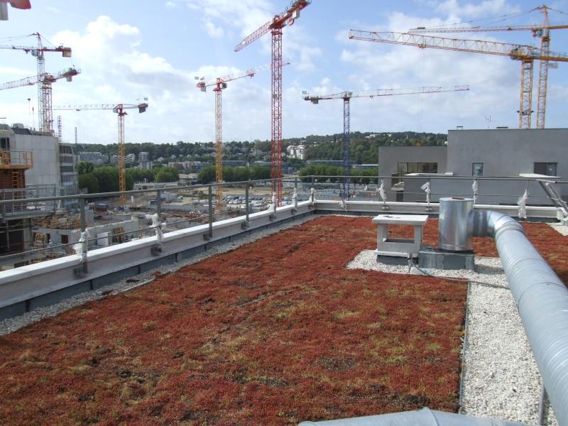 Dernières nouvelles du chantier : façade, emménagement, etc, etc Dscf4310