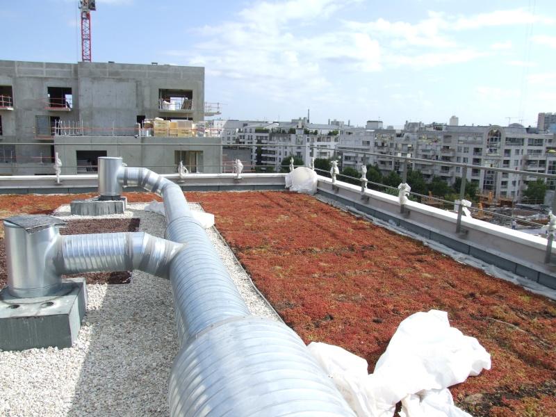 Dernières nouvelles du chantier : façade, emménagement, etc, etc Dscf4312