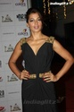 Celebs At Colors Telly Awards 2013 Image070