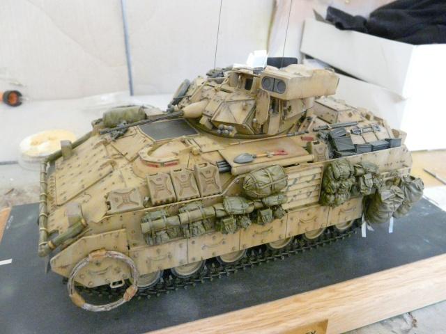 M2 Bradley Tamija 1-35  - Page 2 P1080416