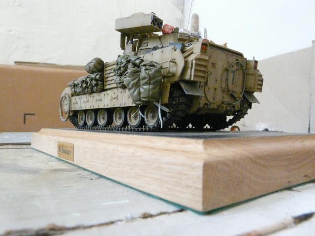 M2 Bradley Tamija 1-35  - Page 2 P1080418