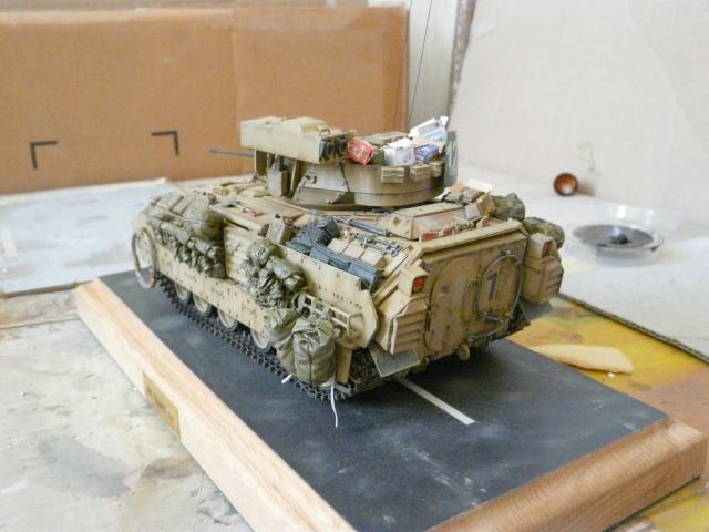 M2 Bradley Tamija 1-35  - Page 2 P1080419