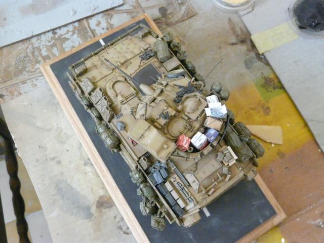 M2 Bradley Tamija 1-35  - Page 2 P1080420