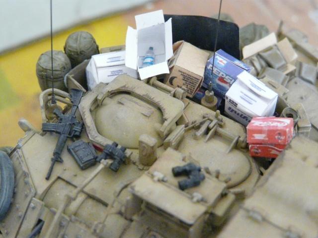 M2 Bradley Tamija 1-35  - Page 2 P1080421