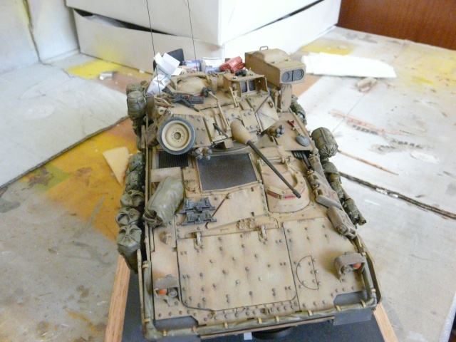M2 Bradley Tamija 1-35  - Page 2 P1080422