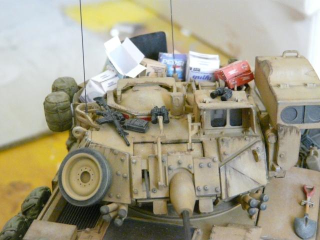 M2 Bradley Tamija 1-35  - Page 2 P1080423